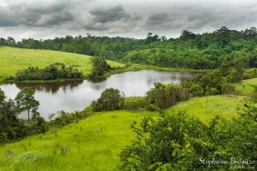 savane-reservoir-flaque-khao-yai