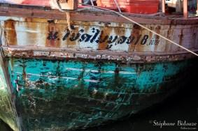 bateau-birman-detail-grapshisme-ecriture