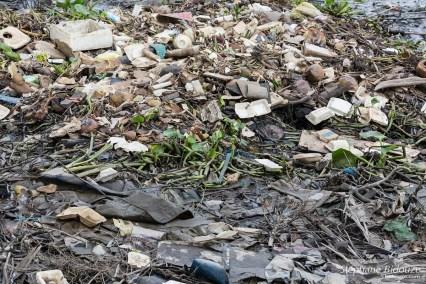 rivière-saigon-pollution