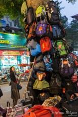 sacs-arbre-vendeur-recouvert-hanoi-vendeur