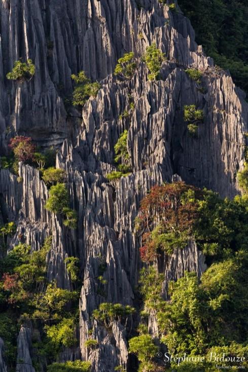 falaise-along-baie-vietnam-karstique