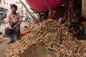 racines-radis-vendeur-birmanie-Zegyo