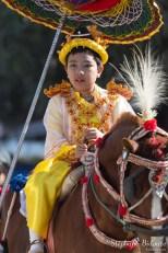 enfant-cheval-myanmar-décoré-festival