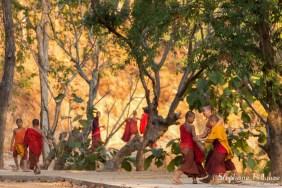 moines-birmanie-inle-lac
