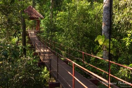 jardin-botanique-trang-thailande