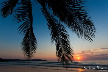 cocotier-soleil-coucher-couchant-thailande