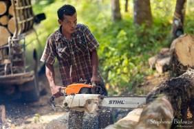 hevea-thailande-homme-tronçonneuse