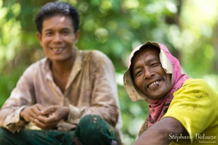 sylviculteurs-thailande
