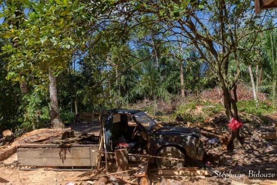 scierie-mobile-voiture-thailande