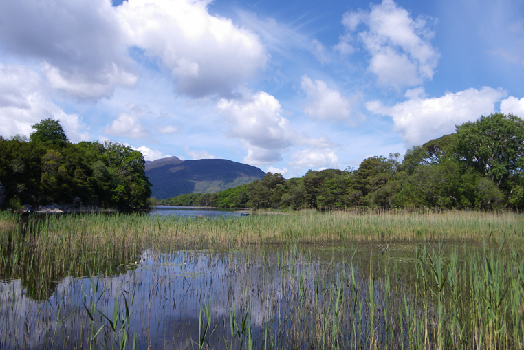 KILLARNEY-NATIONAL-PARK-IRLANDE-3