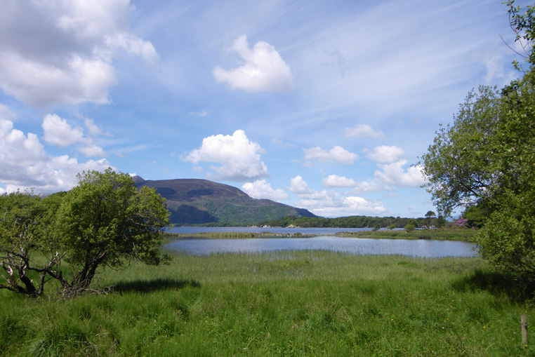 KILLARNEY-NATIONAL-PARK-IRLANDE-5