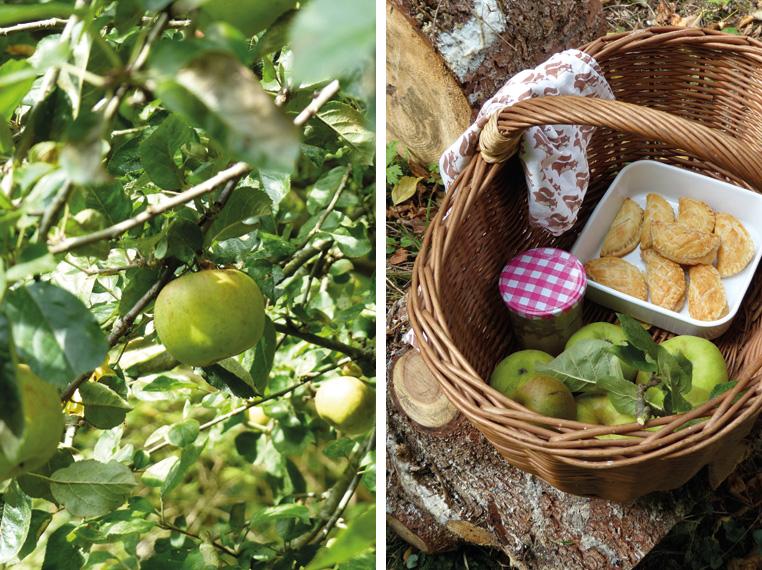 pommes-et-chaussons-aux-pommes