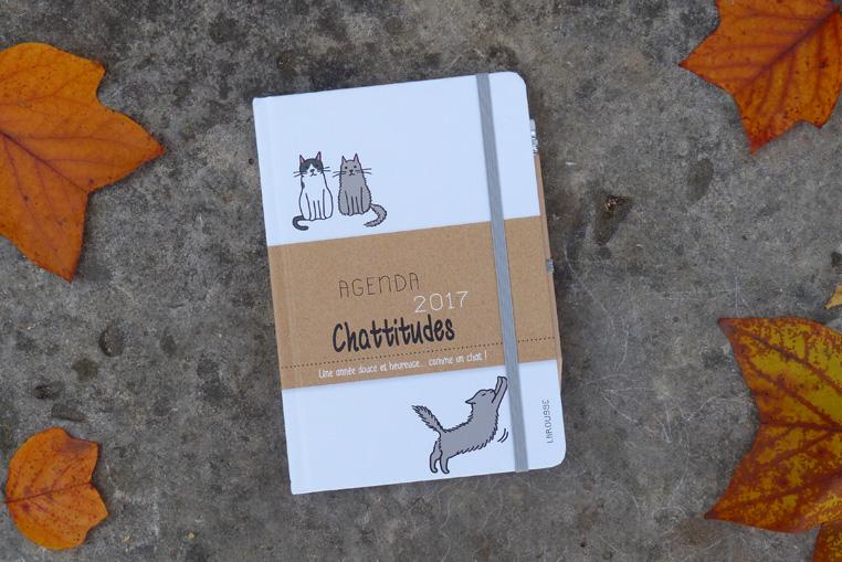agenda-chattitudes-2017