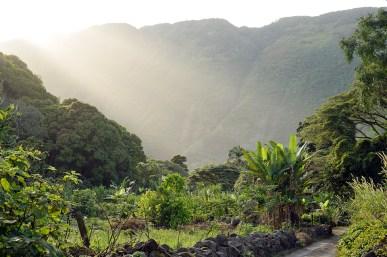 Hawaii 05