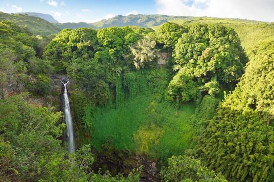 Hawaii 42