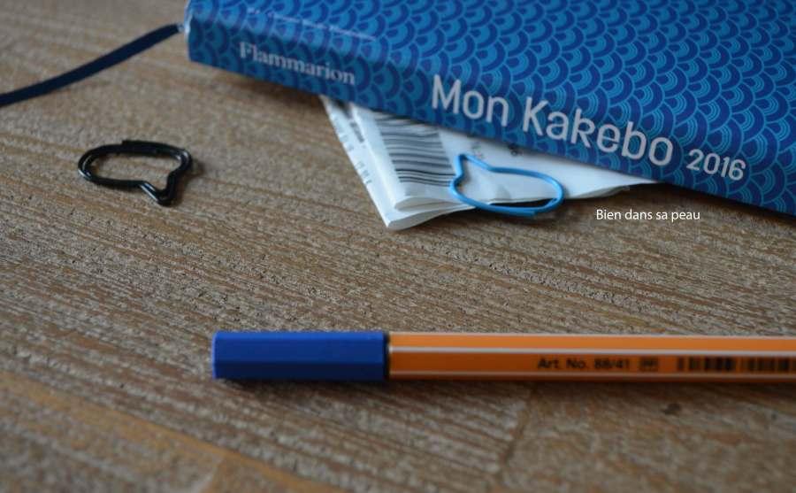 kakebo-revue-11-blog-vernis-chanel-fortissimo-681