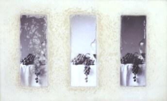 Alberto Pinto 1997 INACTUAL Fotografia e Encaústica s/ Madeira 44 x 76 x 6 cm