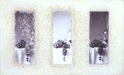 Alberto Pinto (PT) Inactual, 1997 Encáustica e fotografia sobre madeira 44 x 76 x 6 cm Prémio Aquisição na IX Bienal Internacional de Arte de Cerveira, realizada de 9 a 31 de agosto de 1997.