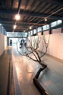 """Isaque Pinheiro, 2009 """"Em cima da terra e debaixo do céu"""" Instalação 400x1100x600 cm Prémio Aquisição Câmara Municipal de Vila Nova de Cerveira na XV Bienal Internacional de Arte de Cerveira, realizada de 25 de julho a 27 de setembro 2009"""
