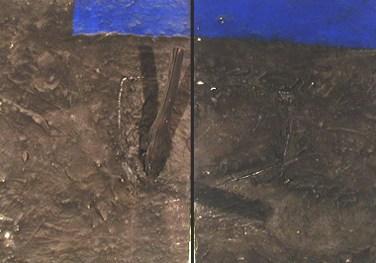 Augusto Canedo (PT) Litoralidade, 1999 Técnica mista 92 x 146 cm