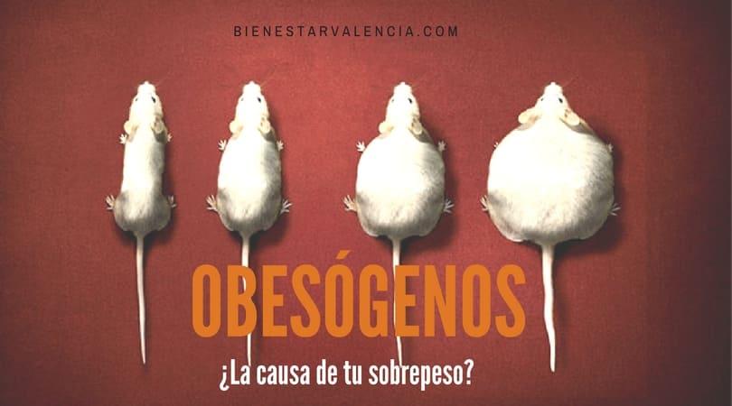 obesógenos sobrepeso