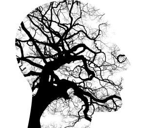 cerveau rêve éveillé libre