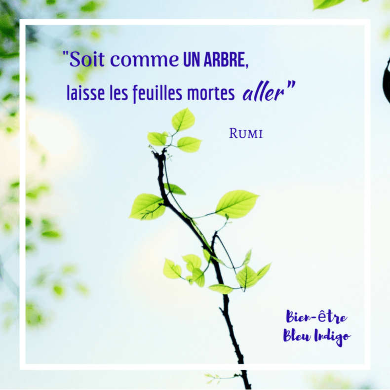 Citation de Rumi. Rumi poète persan