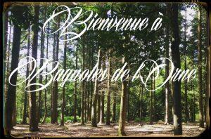 Forêt Domaniale Bagnoles de l'orne