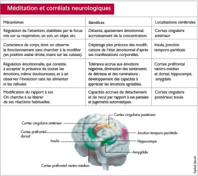 Méditation et corrélats neurologiques