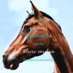 Ces animaux qui nous apprennent à vivre  – #Livre-coup de cœur