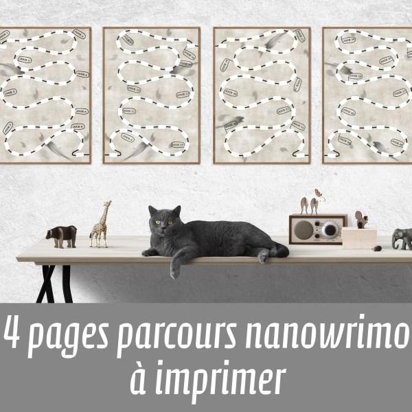 plans for nanowrimo