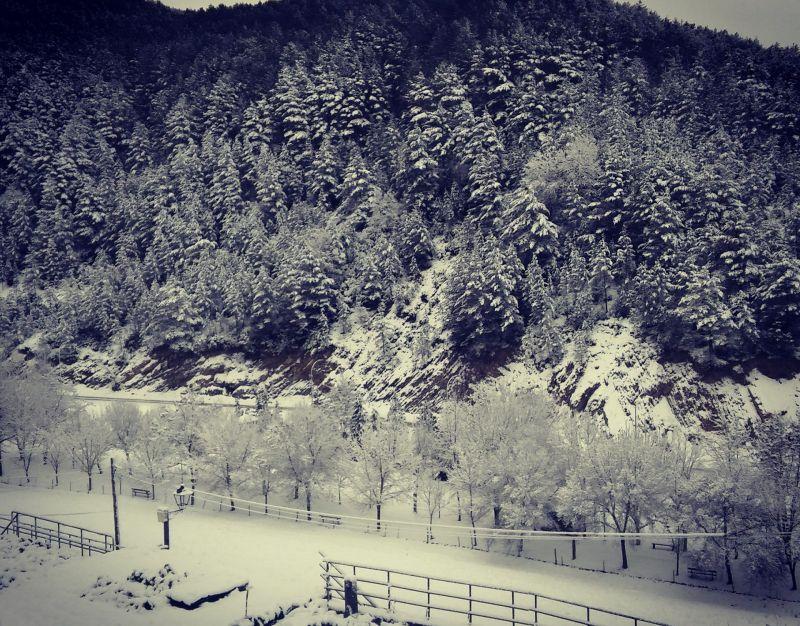 Date buenos paseos y disfruta del paisaje invernal.