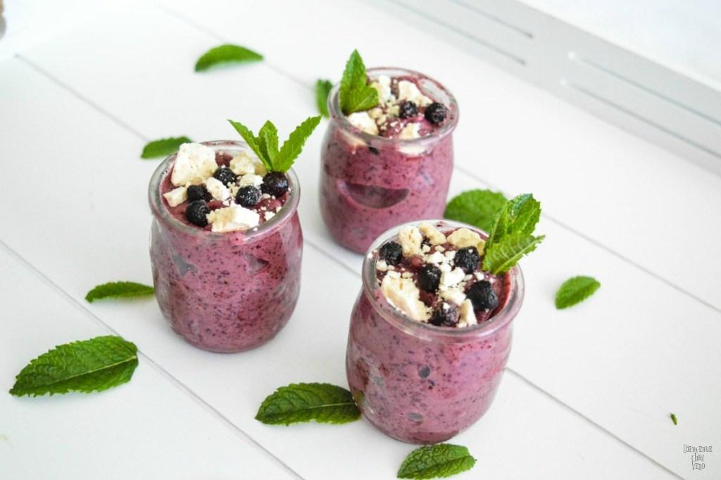 BIENVENUE CHEZ VERO - Yaourt glacé aux fruits rouges et à la menthe (6)