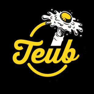 Bières Artisanales T.E.U.B