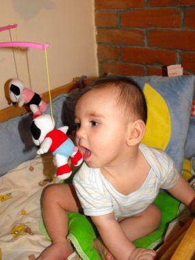 a_Franio_2011_02