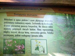 Bieszczady_Otryt_2012_015