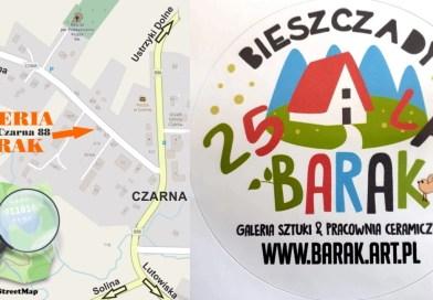 Bieszczadzka Galeria Barak