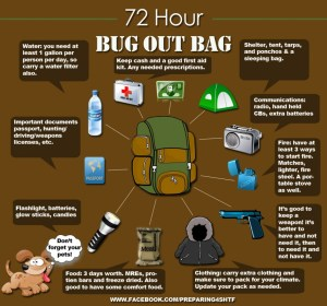 72_Hr_Bug_Out_Bag-1024x958