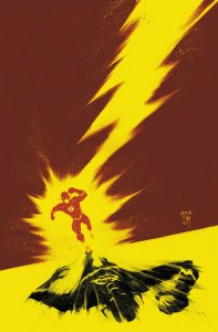 the flash 22 cover
