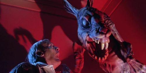 Rabbit Twilight Zone