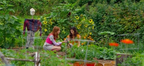librarians-question-garden