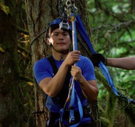 disenchanted forest zipline