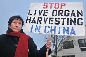 法輪功學員娜塔莉•泰普莉斯基手舉的牌子上寫著:制止中共活摘器官