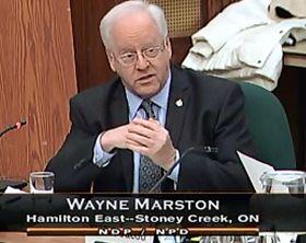'加拿大國際人權委員會副主席韋恩﹒馬斯通'