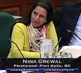 '加拿大國際人權委員會委員妮娜﹒格瑞瓦'