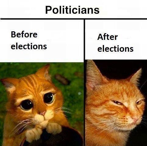 November 4 election results governor