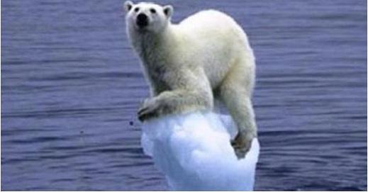 obama polar bear