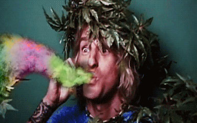 homosexual marijuana chemtrails