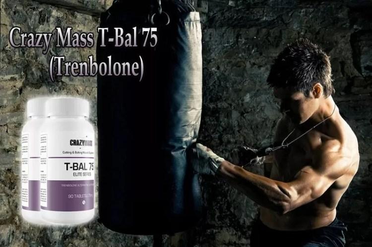 Tren - T-Bal 75 Review