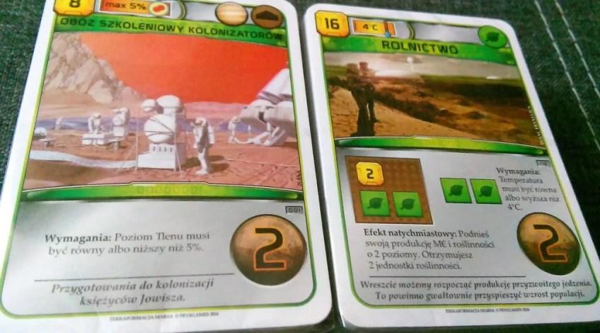 Karty niezbędne do gry, jeszcze zapakowane w folii.